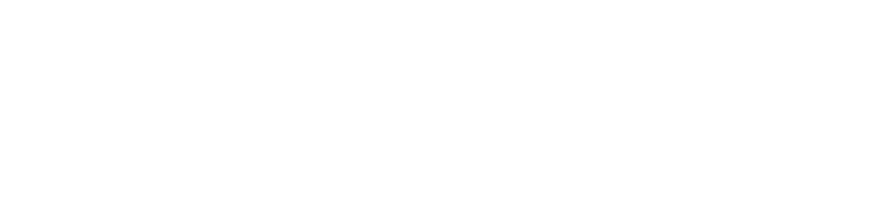 Battle Page Insurance Franklin TN Logo